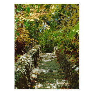 The Green Stairway Postcard