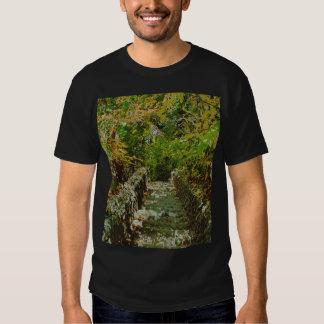 The Green Stairway T-Shirt