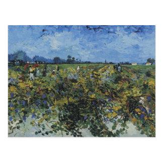 The Green Vineyard, Vincent Van Gogh Postcard
