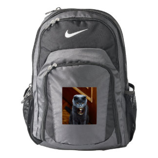 The grey cat British breed with large yellow eyes Backpack