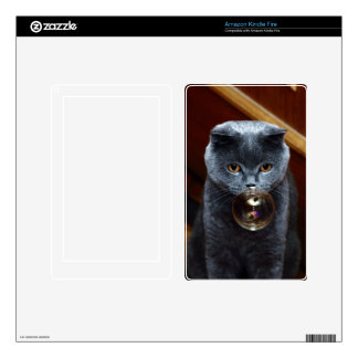 The grey cat British breed with large yellow eyes Kindle Fire Skins