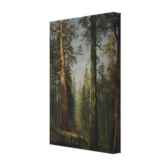 The Grizzly Giant Sequoia, Mariposa Grove Gallery Wrapped Canvas