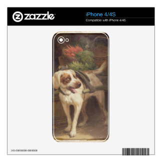 The Grocer's Dog (oil on panel) iPhone 4S Decal