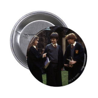 The group outside of Hogwarts Buttons