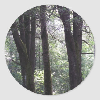 The Grove Classic Round Sticker