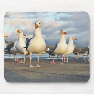 The Gull Gang Mouse Pad