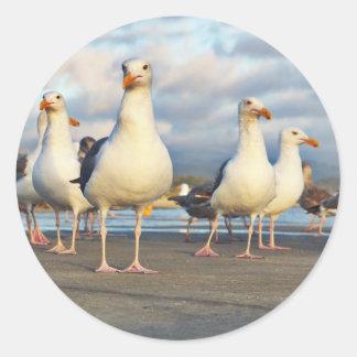 The Gull Gang Classic Round Sticker