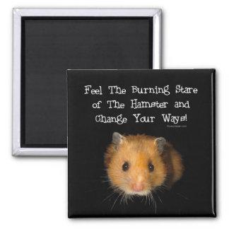The Hamster Magnet