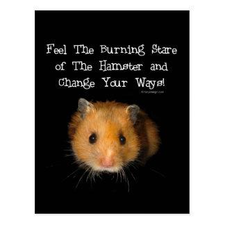 The Hamster Postcard
