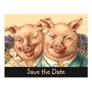 The Handsome Pig Couple Save the Date Postcard
