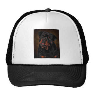 The Handsome Rottie Mesh Hats