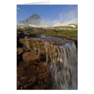 The Hanging Gardens at Logan Pass in Glacier Card