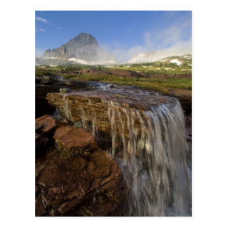 The Hanging Gardens at Logan Pass in Glacier Post Cards