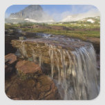 The Hanging Gardens at Logan Pass in Glacier Square Sticker