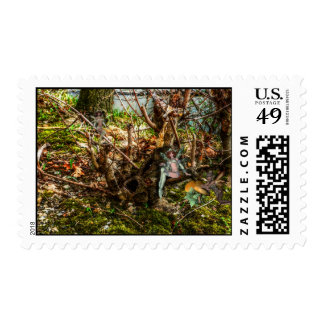 The Hangout Postage Stamp