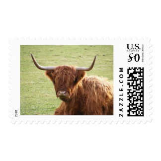 the hangover postage