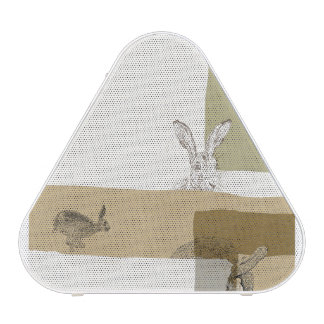 The Hare and the Tortoise An Aesop's Fable Bluetooth Speaker