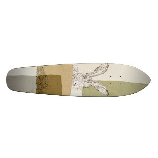 The Hare and the Tortoise An Aesop's Fable Skateboard Deck