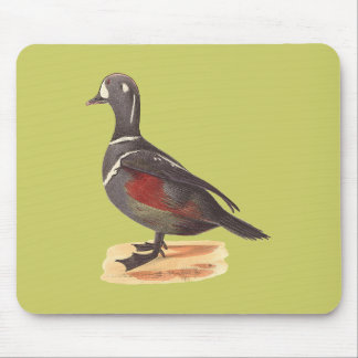 The Harlequin Duck(Fuligula histrionica) Mouse Pad