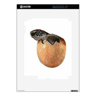 The Hatchling iPad 2 Decal