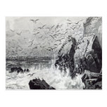 The Haunt of the Gulls Postcard