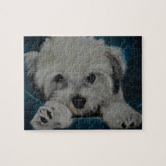 The Havanese Jigsaw Puzzle