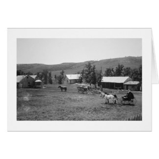 The Haylie Ranch, Crook County, Wyoming, c.1890 (b Greeting Cards