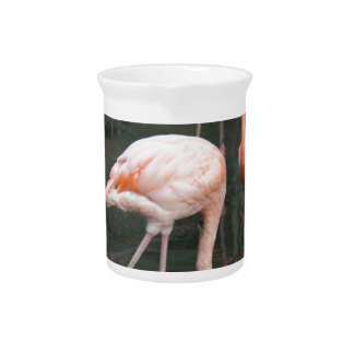 The head of a flamingo under the water drink pitchers