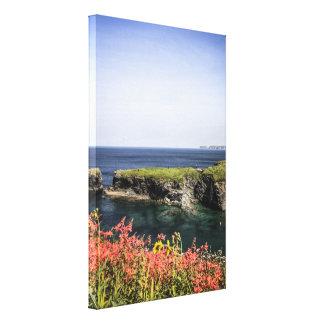 The headland near Port Isaac Cornwall Canvas Print