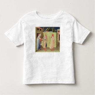The Healing of Palladia T Shirt
