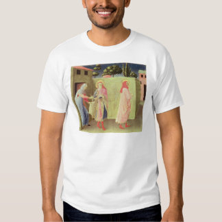 The Healing of Palladia T Shirts