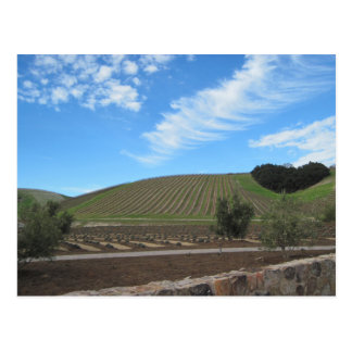 The Heart of Paso Robles Wine Country Postcard