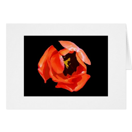 """""""The Heart of the Tulip"""" Greeting Card"""