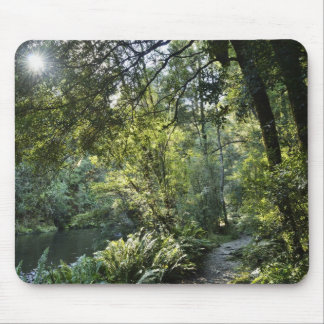 The Hellyer River flows peacefully through a 2 Mouse Pad