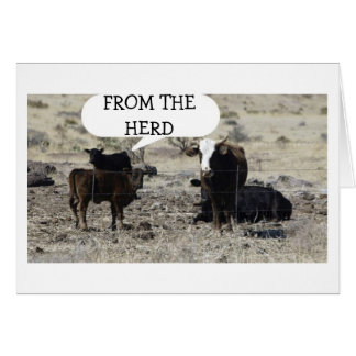 "THE ""HERD"" HAD ""HEARD"" IT IS YOUR BIRTHDAY-GROUP GREETING CARD"