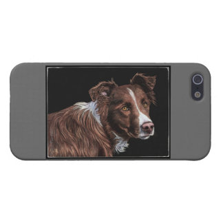 """The Herder"" - Border Collie iPhone 5 Case"