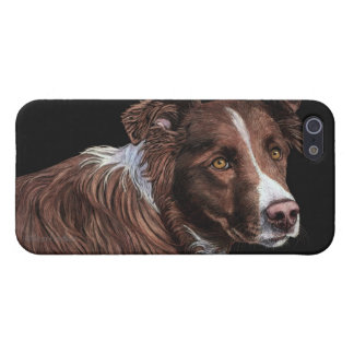 """The Herder"" - Border Collie iPhone 5 Case - #2"