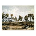 The Hermitage Postcard