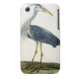 The Heron Ardea cinerea plate from The British iPhone 3 Cover