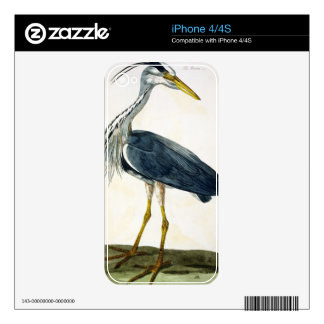 The Heron (Ardea cinerea) plate from 'The British Decal For The iPhone 4S
