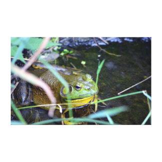 The Hidden Frog Canvas Prints