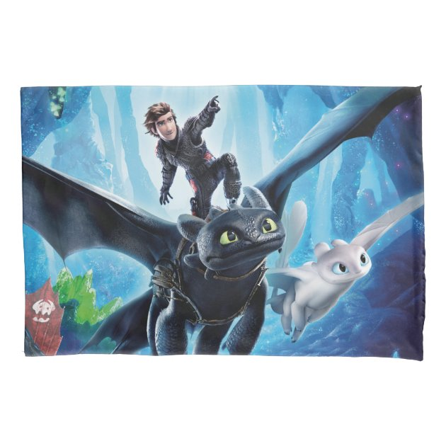 How to Train Your Dragon The Hidden World 1 Custom Shower Curtain