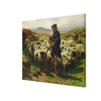 The Highland Shepherd, 1859 Canvas Print