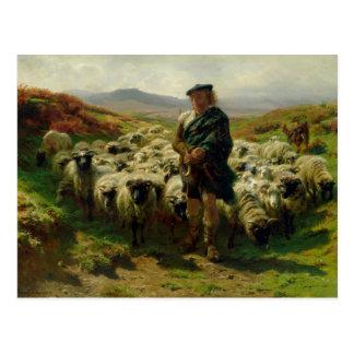 The Highland Shepherd, 1859 Postcard