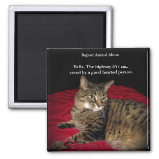 The Highway 655 cat 2 Inch Square Magnet