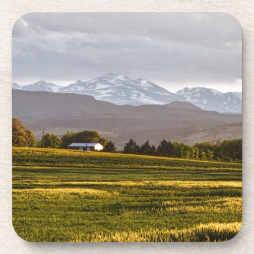 The Hills Are Alive Coasters