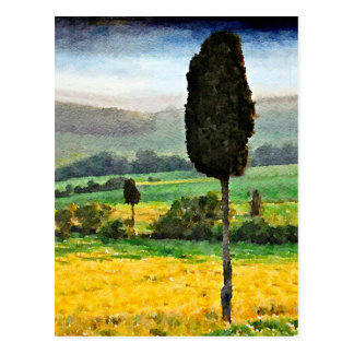 The Hills of Tuscany Postcard