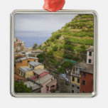the hillside village of Manarola-Cinque Terre, Ornament