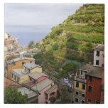 the hillside village of Manarola-Cinque Terre, Tiles
