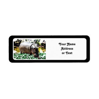 The Hippo And The Bird Label